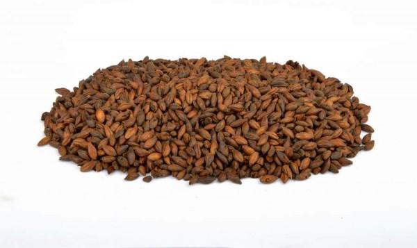 Brewferm Röstmalz Chocolate 800 -1000 EBC - 1 kg